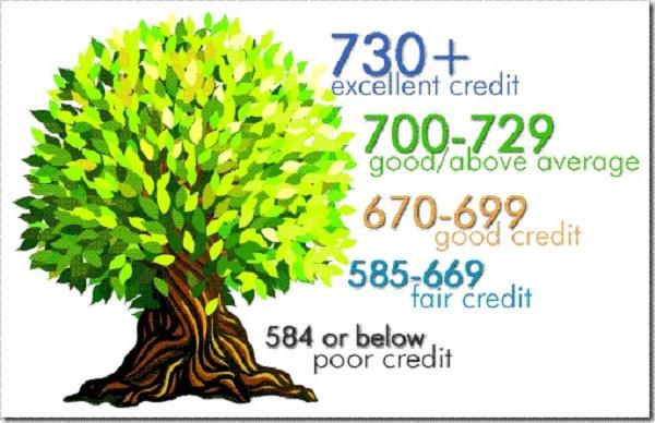 istoric de creditare